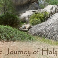 The Journey of Holy Week 2015